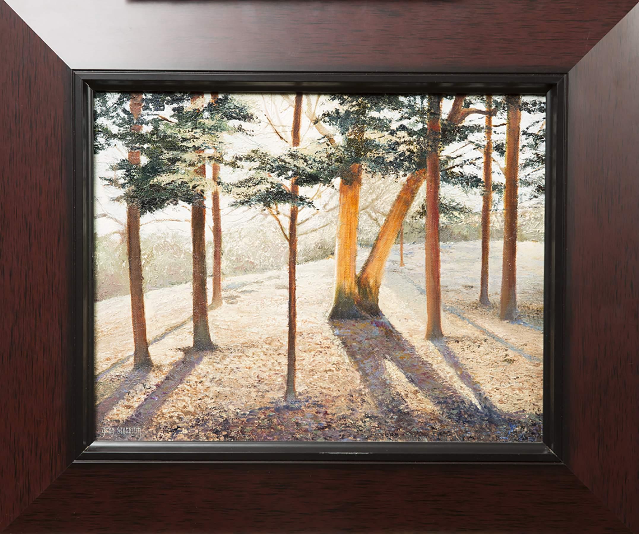 longhorn winter garden village home design u0026 interior design